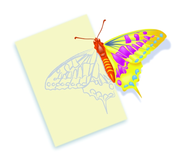 Schmetterling_Logo_Rechteck